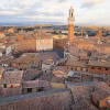 Thumbnail image for 3 Must See Attractions in Siena